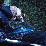 Days of Our Lives Weekly Spoilers July 24-28: Abigail Hit by Speeding Car While Saving Chad – Injuries Leave Abby's Life at Stake